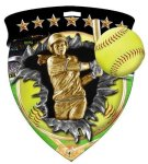 Softball Medal Color Shield Medal Awards