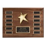 Perpetual Star Plaque Fire and Safety Awards