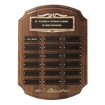 Bronze Framed Perpetual Plaques Golf Awards
