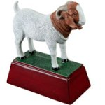 Boar/Goat Resin Multi-Activity Resin Trophy Awards