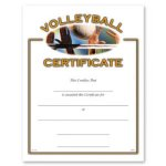 Volleyball Volleyball Trophy Awards